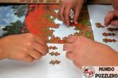 ii-torneo-valladolid-17-18-sept-2016-port-146